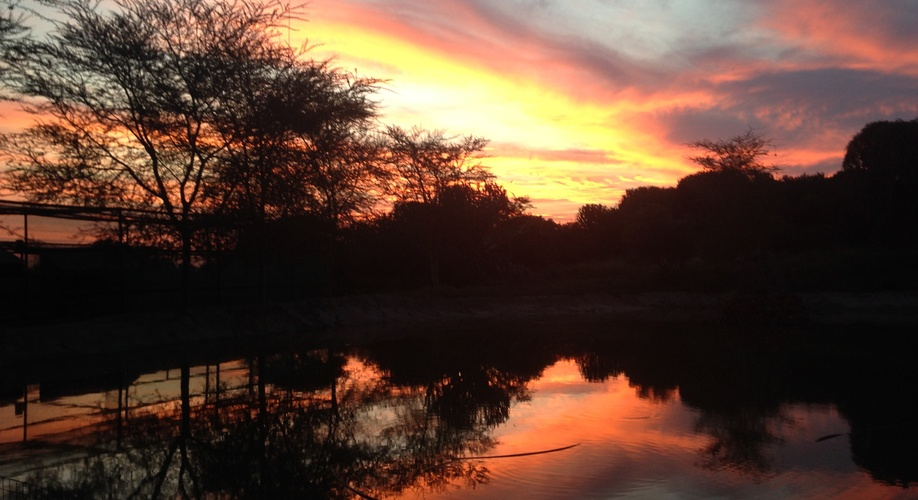 Sunset as seen from Baobab Spa & Beauty